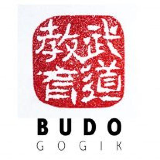 cropped-cropped-logo-budogogik-31.jpg